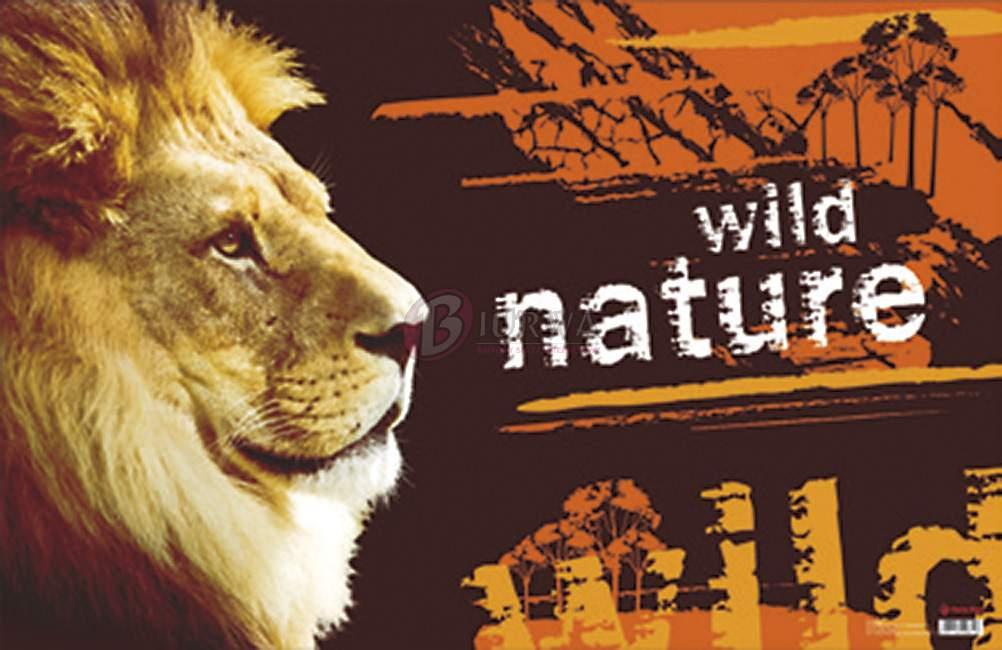 mata na biurko wild nature